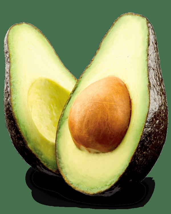 avocat Grossiste en fruits et légumes 100% bio